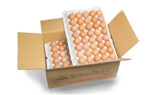 egg160