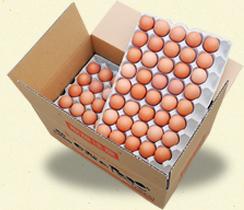egg150